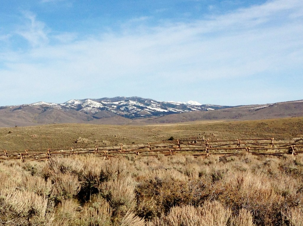 Wyoming Meanderings